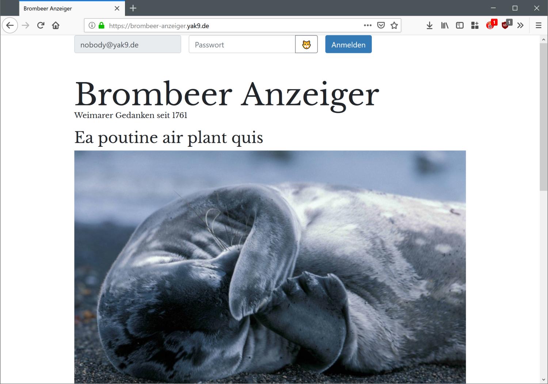 Brombeer Anzeiger
